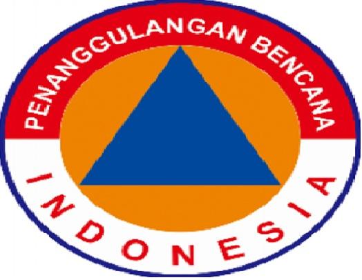 lowongan kerja non cpns, lowongan BNPB Indonesia