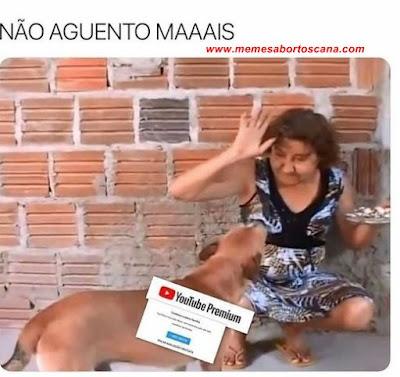 memes de cachorro