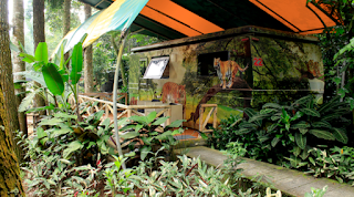 Menginap Di Caravan Hotel Taman Safari Indonesia Cisarua Bogor