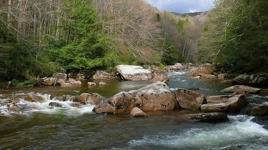 Virginia Eyaleti Amatör Balıkavı Ruhsatı Bilgileri ve Ücretleri