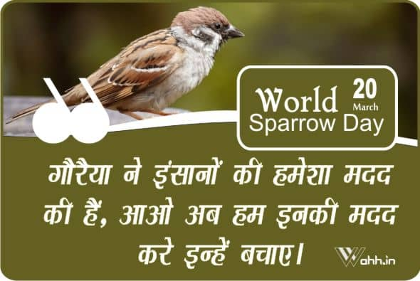 World Sparrow Day Wishes In Hindi With Images