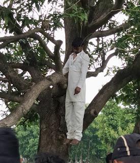 पेड़ से लटकती हुई मिली युवक की लाश