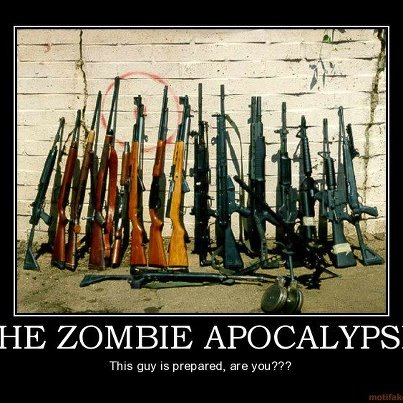 Guns For Zombies Preper Meme