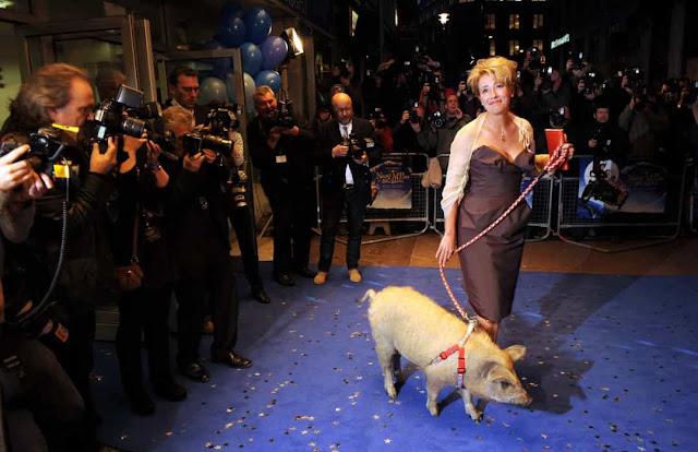 Celebridades e seus momentos animalescos
