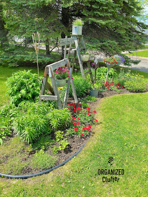 My Late June Flower Junk Garden Border With Planting Guide