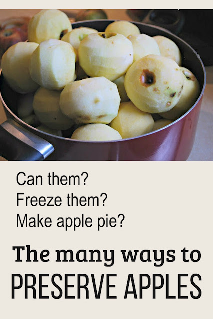 What's the best way to preserve apples? Can them? Freeze them? Bake them into an apple pie? Let's explore the many ways of preserving apples.