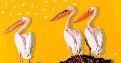 Pelikanların Boğaz Harbi