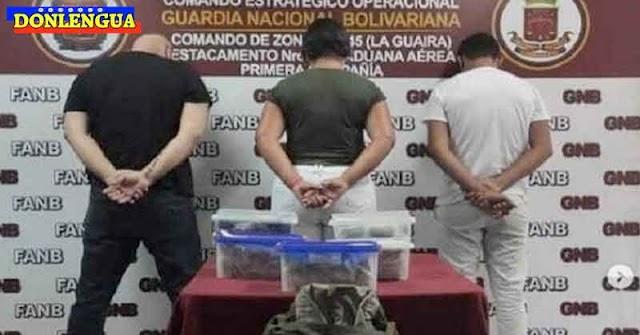 Detenidos por intentar llevarse 264 ciempiés venenosos a Turquía
