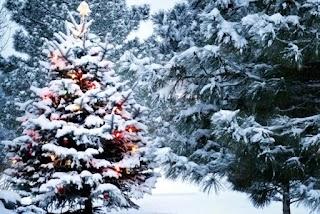 Різке похолодання перед Новим роком: метеоролог здивувала прогнозом погоди