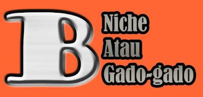Blog Gado Gado Atau Blog Niche?