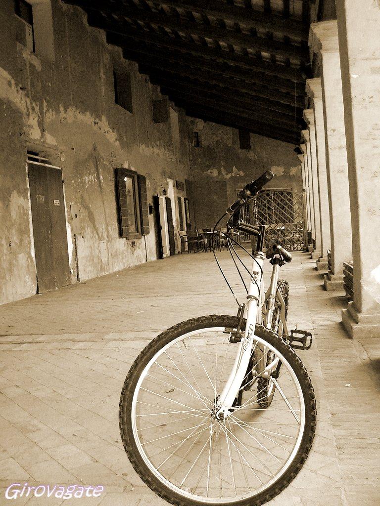 bicicletta Mesola parco delta po