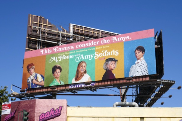 At Home Amy Sedaris 2019 Emmy nominee billboard