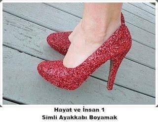 Ayakkabı, Boyama, Yenileme Resimli Açıklamalı