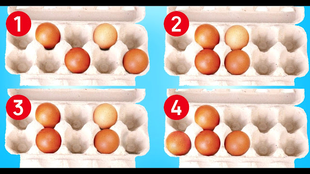 Выбери, в каком лотке яйца лежат правильно, — узнай о своей самой сильной стороне!