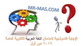 صورة الإجابة النموذجية لامتحان اللغة العربية للثانوية العامة 2019 دور أول