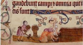 Dones camperoles medievals que collien gra al costat d'un home, c. 1325-1340. Cortesia de la British Library, domini públic.