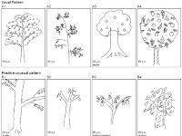 Bagaimana Tes Psikotes kerja menggambar pohon?