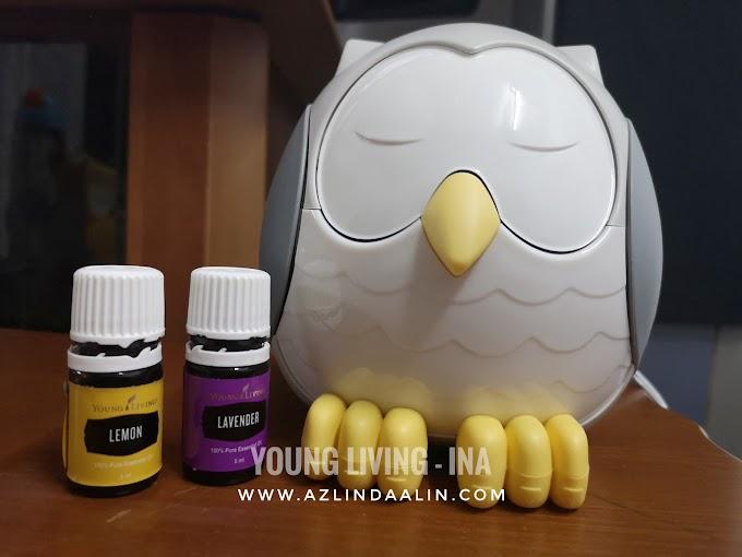 YOUNG LIVING OWL DIFFUSER ADA LAGU / BUNYI DAN WARNA IKUT MOOD !