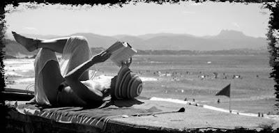 lecture vacances été 2016 conseil avis critique chronique blog littéraire Bibliza