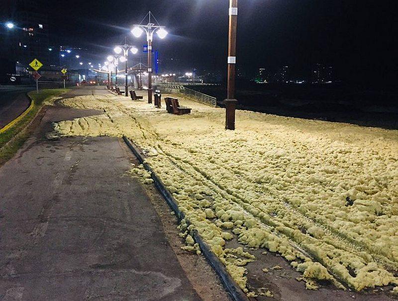 Esto pasa cuando  se juntan un bloom  de algas y marejadas