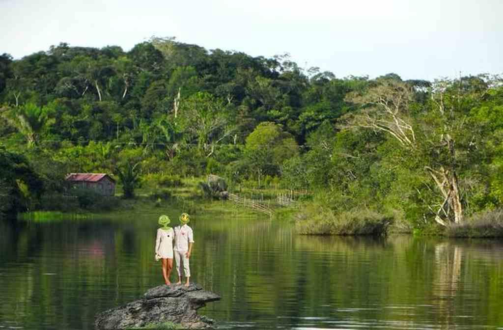 O Brasil possui 60% da mata nativa preservada, 44% da sua matriz energética renovável e é tratado como vilão por países que são movidos a carvão, que é o mais poluidor dos geradores de energia