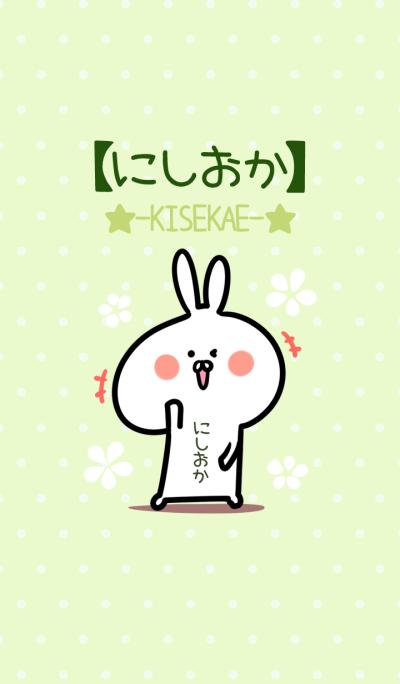 Nishioka usagi green Theme