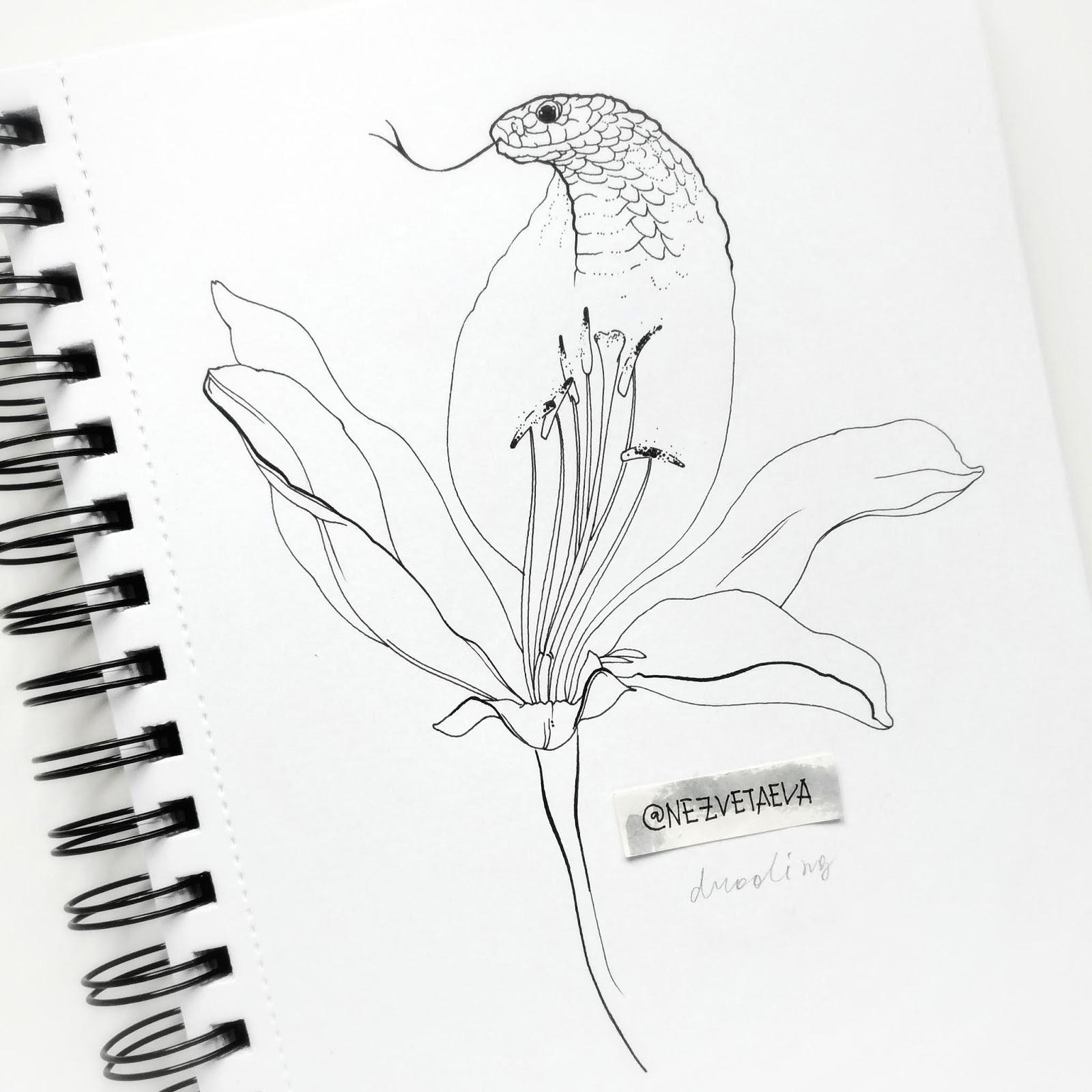 sonia-nezvetaeva-inktober2018-lily-dotwork-sketch
