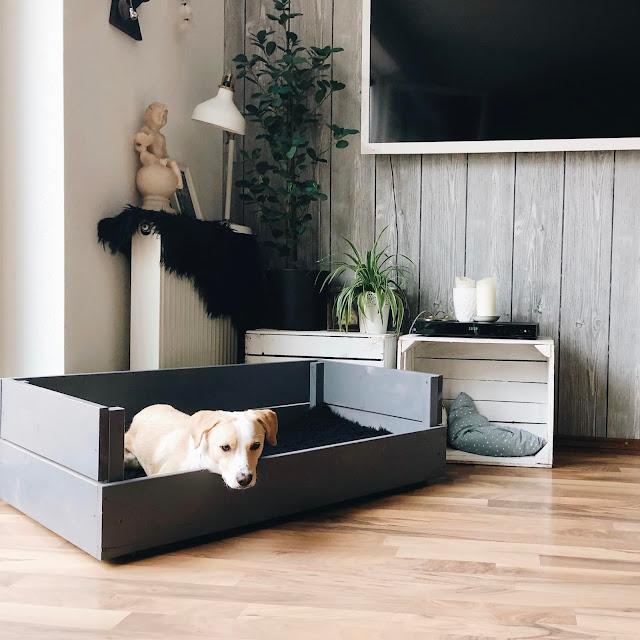 Hundebett, selberbauen, DIY, Hundebett DIY, Anleitung Hundebett bauen, Hundeschlafplatz selbstgemacht