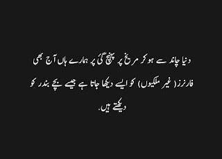 funny urdu quotes 13