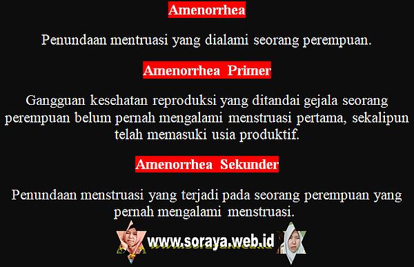 Arti Kata Amenorrhea Primer dan Skunder Menstruasi Wanita