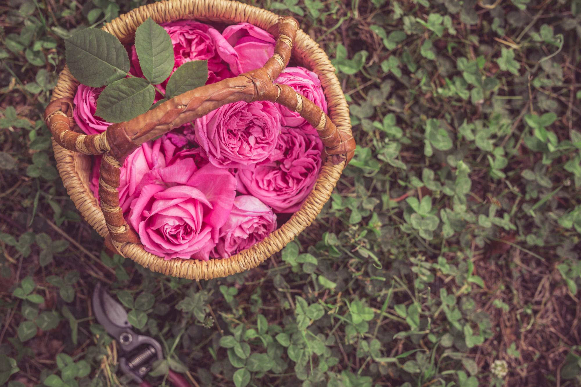 Домашен скраб с рози