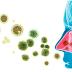 Vì sao kháng sinh chỉ diệt được vi khuẩn mà không diệt được virus?