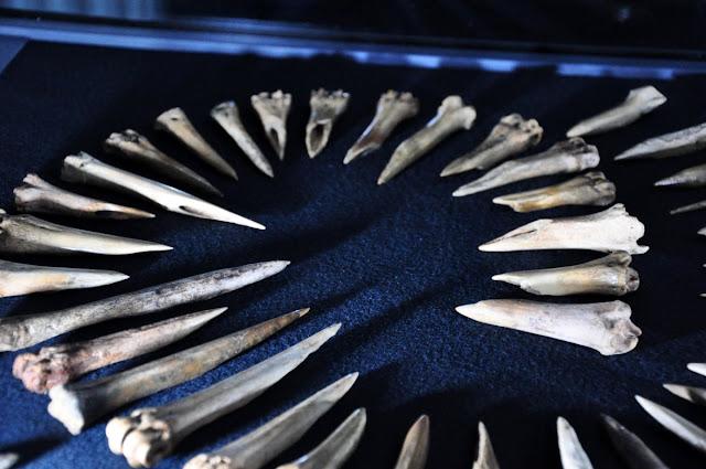kolce wczesnośredniowieczne - wystawa Z poroża i kości, Giecz