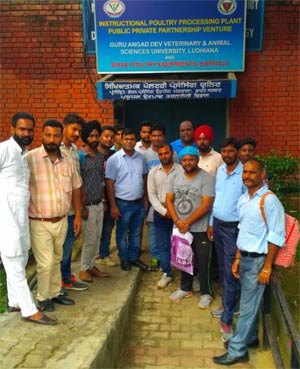 Butchers/floor level workers of meat industry during training programme