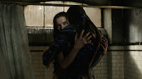 The Shape of Water Sally Hawkins and Doug Jones Image 2 (23)