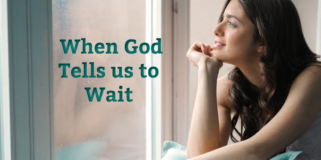 "Sometimes when we pray, God tells us to wait. This devotion explains how we can wait ""constructively."""