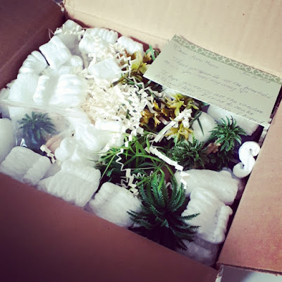 Cardboard mailing box, opened to show miniature fake plants, smalll parcels and packing peanuts.