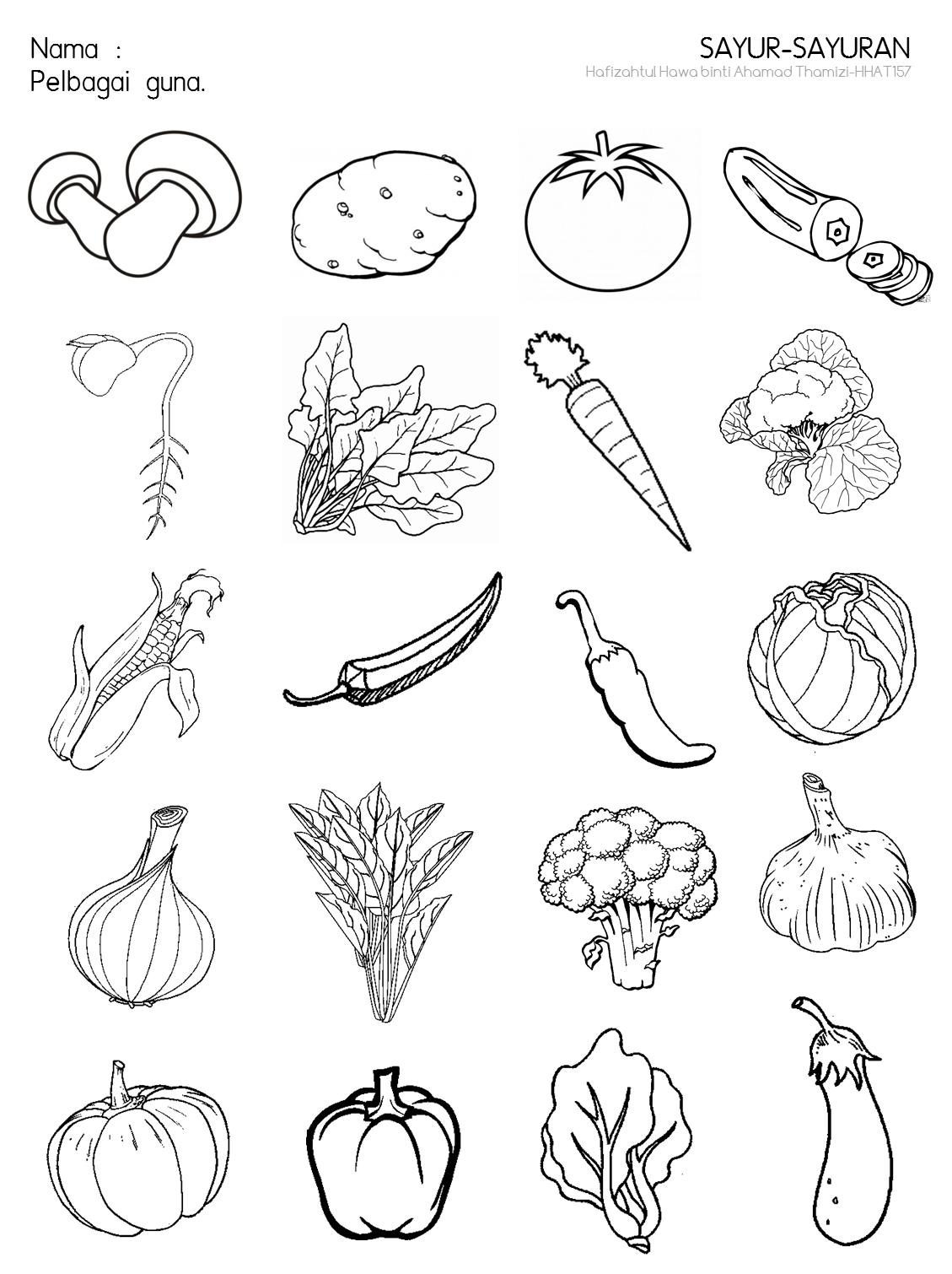 Cikgu Fieza Hhat157 Sayur Sayuran