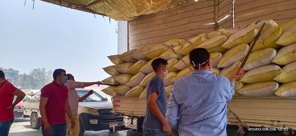 محافظ كفرالشيخ يتابع انتظام عمليات توريد القمح للصوامع والشون بالمحافظة