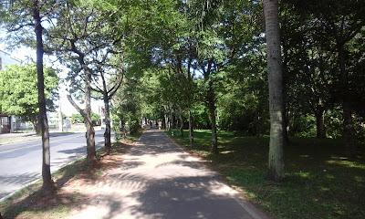 A foto mostra mais uma ciclovia no parque da cidade para todos se exercitarem ao ar livre,