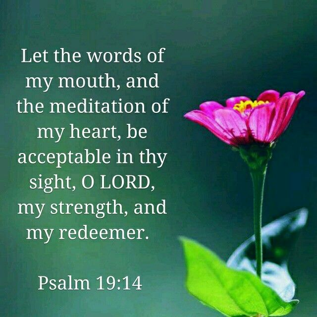 May the words of my mouth and the meditation of my heart be pleasing in your sight, O Lord, my Rock and my Redeemer.