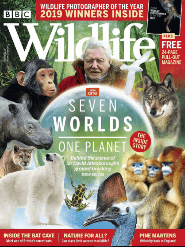 BBC-Wildlife-Magazine-November-2019-For-All-Competitive-Exam-PDF-Book