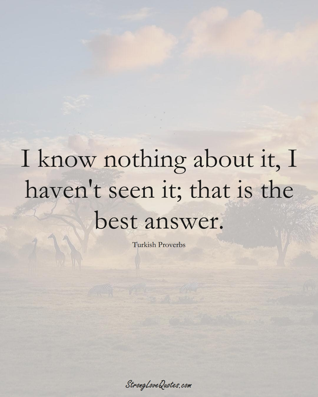 I know nothing about it, I haven't seen it; that is the best answer. (Turkish Sayings);  #MiddleEasternSayings