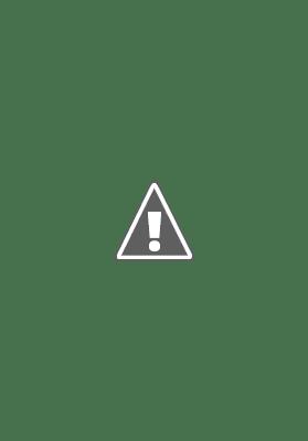 UNDP ACCELERATOR LAB INTERN   UNDP Careers