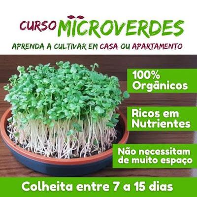 Curso Online de Microverdes