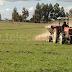 Analizaron impacto de programa de recuperación de suelos degradados en el Maule