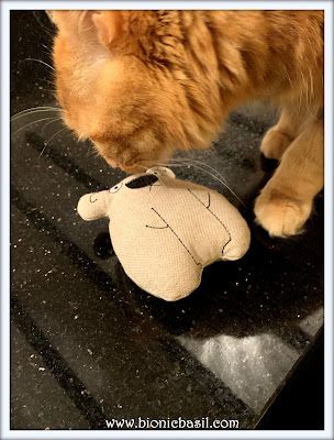 Feline Fiction on Fridays #116 at Amber's Library ©BionicBasil®Fudge meets Karl