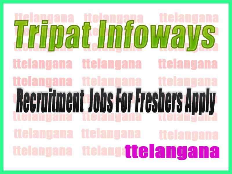 Tripat Infoways Recruitment Jobs For Freshers Apply