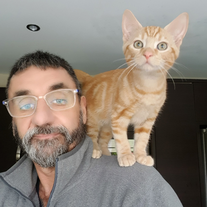 ginger tabby kitten standing on man's shoulder