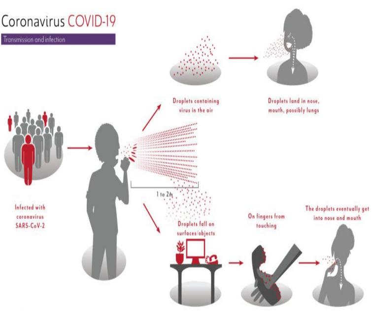 Patofisiologi COVID 19